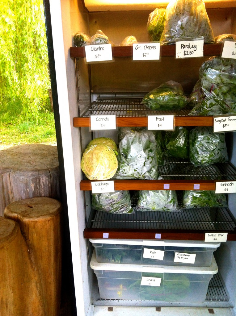 The fridge is stocked full! Get your vegetables it while they last.