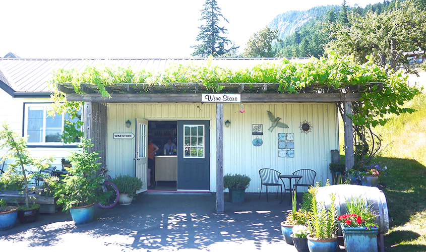 Salt Spring Island Vineyards: Garry Oaks Winery, BC