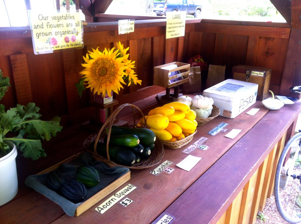 All the vegetables and flowers are grown organically.